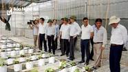 Nghệ An: Phấn đấu  61,5% xã, 4 huyện và trên 100 thôn bản đạt chuẩn NTM vào năm 2020