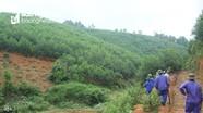 Hơn 109 nghìn ha rừng và đất lâm nghiệp sẽ được giao trong năm 2019