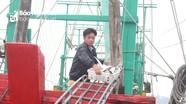 Nghệ An: Cuối năm ngư dân trúng đậm cá hố