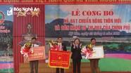 Đồng chí Đinh Viết Hồng dự lễ đón Cờ thi đua của Chính phủ của xã Kỳ Tân (Tân Kỳ)