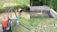 Nắng hạn cực điểm, 12 vạn hộ dân khát nước