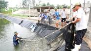 Nghệ An yêu cầu xử lý nghiêm các trường hợp phát tán nguồn bệnh thủy sản ra môi trường