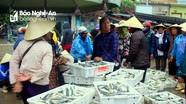 Chuyến biển cuối năm ngư dân Quỳnh Lưu mang về hàng tấn cá/tàu