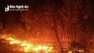 Rừng thông Yên Thành tiếp tục cháy trở lại