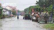 Ngư dân Nghệ An kéo bè mảng lên đường nhựa tránh bão số 7