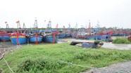 Nghệ An: 3.317 tàu thuyền đã neo đậu trú tránh bão số 8
