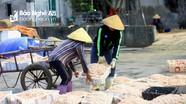 Ngư dân Nghệ An đánh bắt ruốc biển thu tiền triệu mỗi ngày