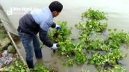 Muôn kiểu chống rét cho vật nuôi của nông dân Nghệ An