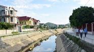 Quê lúa Nghệ An nhận khoảng 45 triệu USD kiều hối dịp Tết