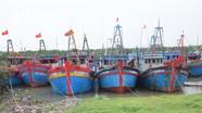 3.354 tàu thuyền của Nghệ An đã neo đậu an toàn tránh bão số 7