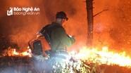Khống chế đám cháy rừng tại Hưng Nguyên (Nghệ An)