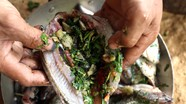 Hấp dẫn món cá nướng măng chua ở vùng cao Nghệ An
