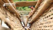 Người dân vùng cao Nghệ An dựng lũy trên suối đón cá đặc sản