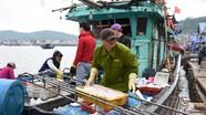 Mồng 4 Tết: Ngư dân Nghệ An ra khơi đánh bắt đầu năm