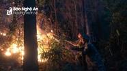 Khống chế đám cháy rừng tại huyện Quỳnh Lưu