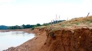 Cận cảnh sạt lở bờ sông Lam đoạn qua Tương Dương, Con Cuông