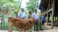 Mô hình Chi bộ Đảng giúp hộ nghèo ở Kỳ Sơn