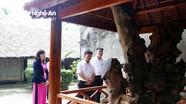 Chuyện về cây mít hơn 130 năm tuổi ở quê ngoại Bác Hồ