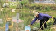 Có nên thả cá chép ngày ông Công, ông Táo không?