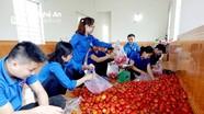 Lập đội thanh niên tình nguyện bán nông sản sạch giúp nông dân