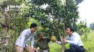 Nhân rộng phong trào nông dân sản xuất, kinh doanh giỏi ở Tương Dương