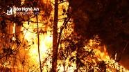 Rừng Nam Đàn lại cháy ngùn ngụt, cả nghìn người chữa cháy trong đêm