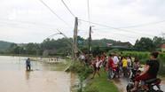 Săn cá đồng trong ngày mưa lớn