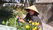 'Bà Bảy bán bún' tình nguyện chăm sóc nghĩa trang liệt sỹ