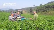 Thanh Thủy phấn đấu trở thành xã phát triển toàn diện của huyện Thanh Chương
