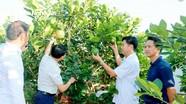 Đoàn kết đưa xã Thanh Phong (Thanh Chương) phát triển giàu mạnh