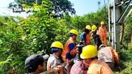 Nghệ An: Đẩy nhanh tiến độ nâng cấp, hoàn trả lưới điện nông thôn