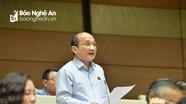Quốc hội thảo luận tại Hội trường về dự án Luật Tố cáo và Luật Cạnh tranh