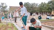 """""""60 ngày xây dựng nông thôn mới"""" ở Trung Sơn"""