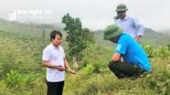 Nghệ An chi trả kịp thời hơn 112,6 tỷ đồng dịch vụ môi trường rừng