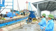 Nghệ An: Gần 66.000 tấn hàng hóa thủy sản thông qua hệ thống cảng cá