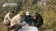 Tuổi trẻ Kỳ Sơn phối hợp tuần tra bảo vệ rừng phòng hộ