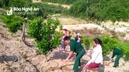 Bộ đội Biên phòng đưa cam Xã Đoài sang Lào