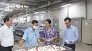 HĐND tỉnh yêu cầu Công ty CP Dệt may Hoàng Thị Loan khắc phục bất cập về môi trường