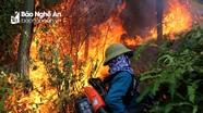 Nghệ An: Khi cháy rừng xảy ra, lãnh đạo huyện, thành, thị có mặt tại hiện trường