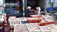 Ngư dân thị xã Hoàng Mai vươn khơi 'trúng' đậm cá trỏng