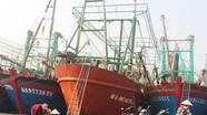 Ngư dân Nghệ An đi thuê 'tàu 67' ngoại tỉnh về khai thác cho thu nhập cao