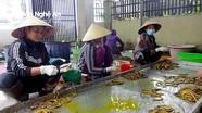 Đặc sản lươn đồng ở quê lúa Yên Thành