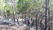 Nghệ An tăng cường giải pháp canh phòng lửa rừng