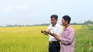 Nghệ An với các giải pháp đẩy mạnh bảo hiểm nông nghiệp