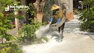 Báo động bùng phát dịch tả lợn châu Phi ở Nghệ An
