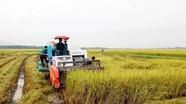 Yên Thành quyết tâm xây dựng huyện nông thôn mới nâng cao