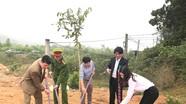 Các địa phương vui Tết trồng cây xuân Mậu Tuất 2018