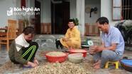 Hành tăm được giá, nông dân Nghi Lộc đổ xô thu hoạch sớm