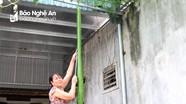 Sửng sốt quả bầu dài gần 2 mét ở Nghệ An