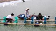 Quỳnh Lưu thả hơn 250 ha tôm vụ 1